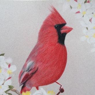 Cardinal, Part 2