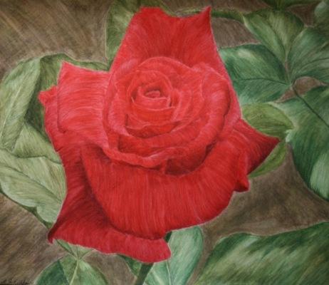 Crimson Serenade