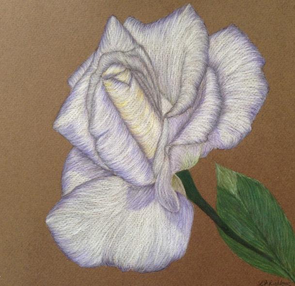 Violet Encroachment