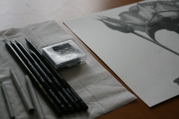 woodlessgraphitepencils